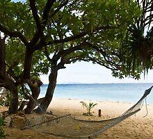 South Sea Island Hammock, Fiji by Michelle Lia