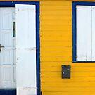 Door, Window, St. Barts by fauselr