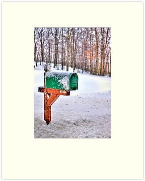 You've Got Mail by Evelina Kremsdorf
