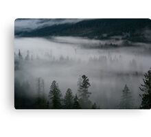 Valley of Drunken Trees Canvas Print