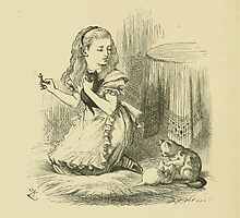 Through the Looking Glass Lewis Carroll art John Tenniel 1872 0240 Red Queen by wetdryvac