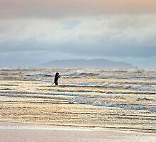 Fishing the Silver Surf by TomRaven