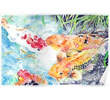 A Gathering Place - Four Koi Poster
