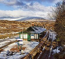Rannoch Station by Lynne Morris