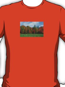 Colorbook Fall,Fifield Wisconsin U.S.A. T-Shirt