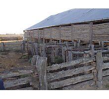 Lake mungo shearing shed yards Photographic Print