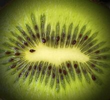 Kiwi Slice by Denise McDermott