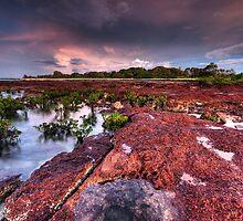 East Point Twilight by Matt Halls