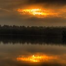 Shine On Me - Narrabeen Lakes, Sydney - The HDR Experience by Philip Johnson