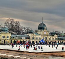 Skating in Budapest by zumi