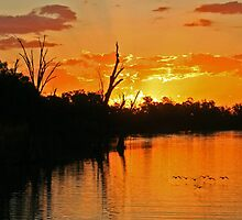 Murray River sunset by Nicoletté Thain Photography