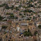 Granada by Stephen Greaves