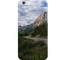 Icefields Parkway in Bloom iPhone Case/Skin