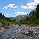 bavarian wilderness by Jo-PinX