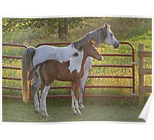 Mare and Foal at Dusk Poster