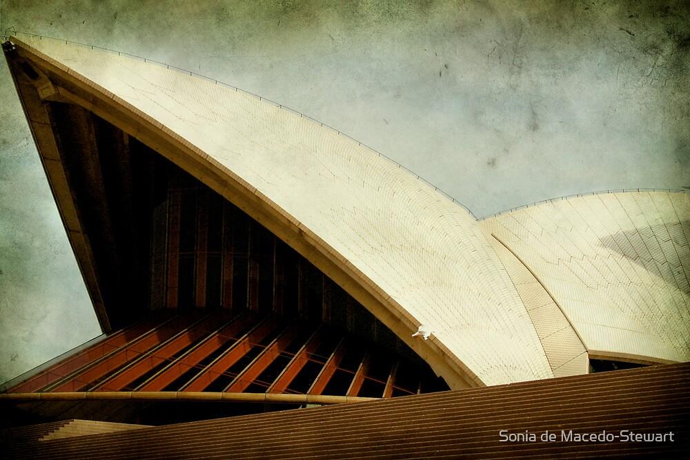 Darth Vader Opera by Sonia de Macedo-Stewart