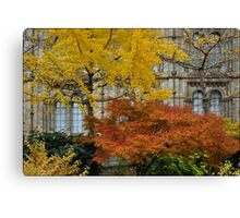 Amber and gold Canvas Print