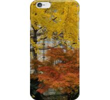 Amber and gold iPhone Case/Skin