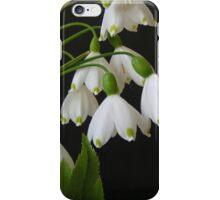 Summer Snow Flakes iPhone Case/Skin
