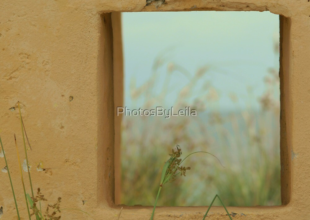 Window into the Past by PhotosByLeila