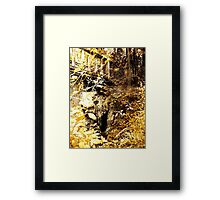 The Troll's Doorway Framed Print