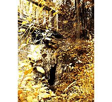 The Troll's Doorway Photographic Print