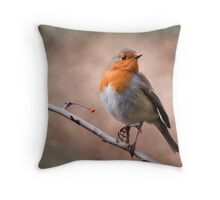 Rustic Robin Throw Pillow