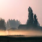 Morning Mist by Irene  Burdell