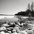 Mississippi Head Waters-in Itasca State Park by Cushman