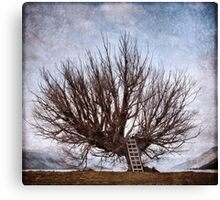 The Whomping Willow Tree Canvas Print