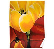 A Hornets Landing - Tulips Poster