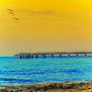A day on the pier ...  by Chris Armytage™