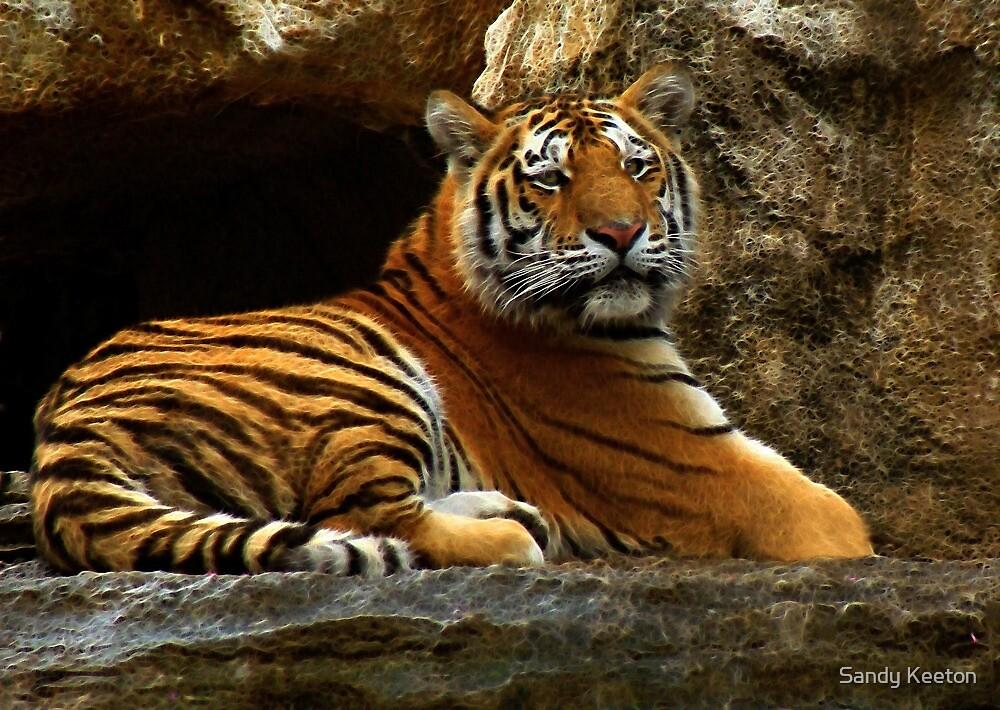Tiger - 2010 by Sandy Keeton