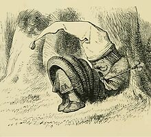 Through the Looking Glass Lewis Carroll art John Tenniel 1872 0100 The King by wetdryvac