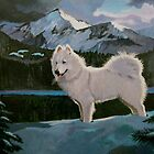 My dog Blizzard a Samoyed. by alan carlson