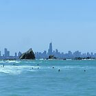 Currumbin Beach by Virginia McGowan