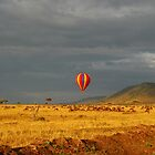 Balloon over the great wildebeest migration by kczpics