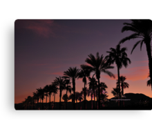 Scenes from Cali VIII Canvas Print