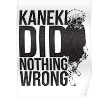 Kaneki Ken Poster
