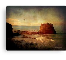 The sound .... Canvas Print