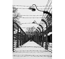 Behind the Wire Photographic Print