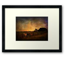 Spreading the light ... Framed Print