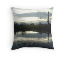Cold Afternoon Throw Pillow