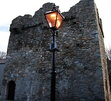 Goat Castle - Dalkey , Ireland by Ferdinand Lucino