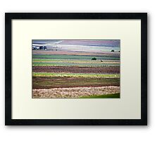 rural layers Framed Print