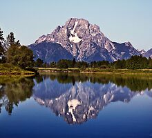 Mount Moran And Snake River by Alex Preiss