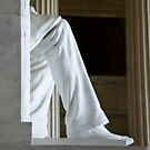 Lincoln's Leg by AmyRalston