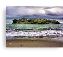 Bird Island Canvas Print