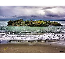 Bird Island Photographic Print