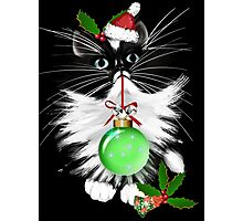 A Tuxedo Merry Christmas Photographic Print